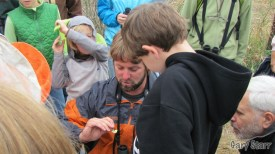 Brendan Collins showing off a Clouded Sulfur at the Butterfly walk