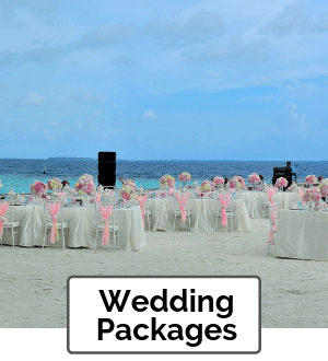 Elegant Wedding Packages Orlando