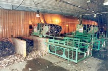 Inside the WSF where organic waste is composted,