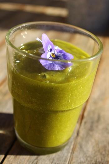 Green Smoothie im Winter mit Green Powder_ Moringa