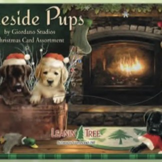 Otto's Granary Fireside Pups Christmas Card Assortment By Leanin Tree Cards