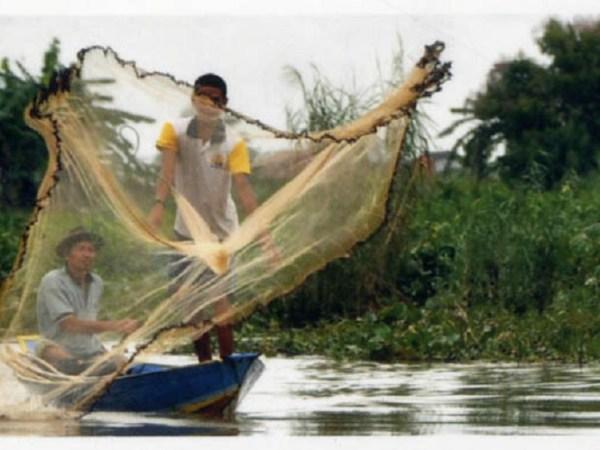 Indonesien berättar: Tusen gevärskulor, tusen fjärilar