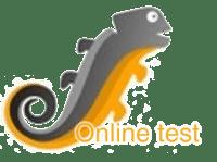 SCIL Online test