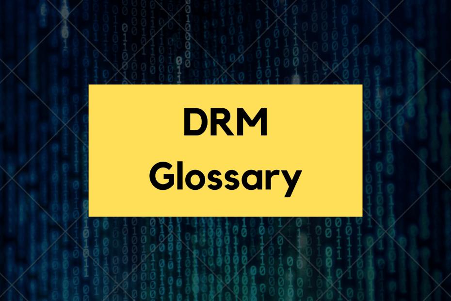 drm glossary