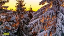 turbacz-rakiety-sniezne-2017-otwarty-horyzont-27