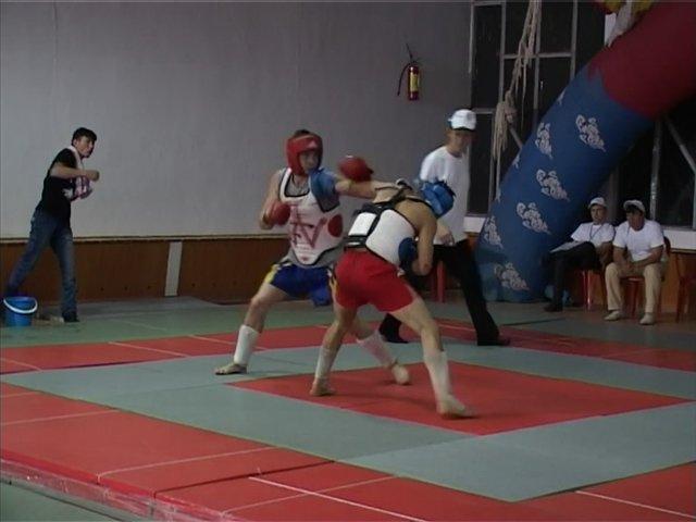 Чемпионат области по Ушу-саньда
