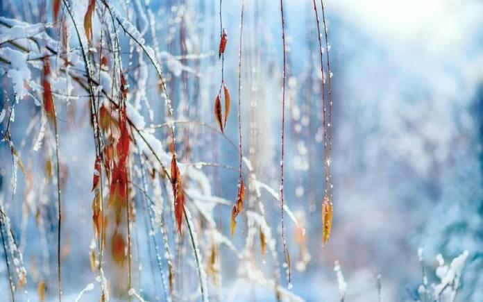 Зима ожидается ранней и снежной