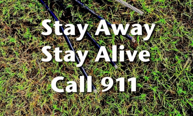 How to Stay Safe Around Downed Power Lines