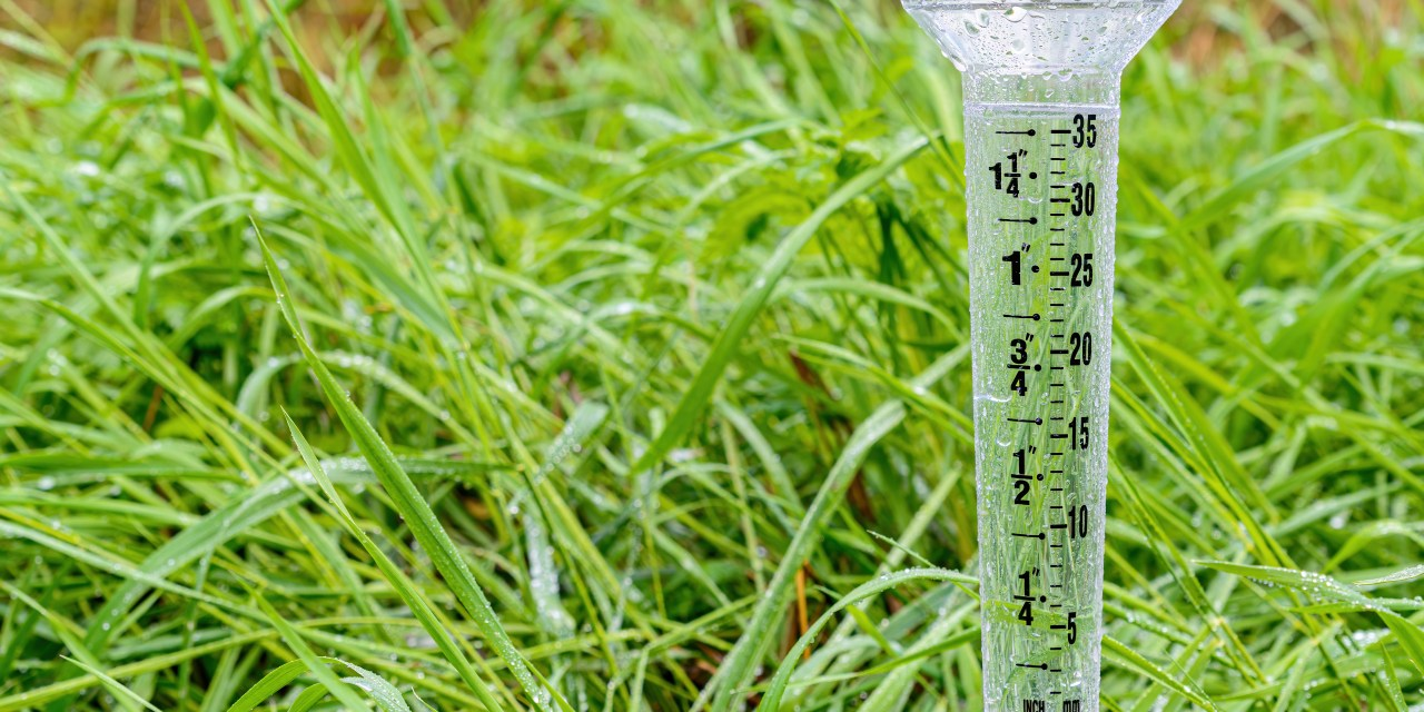 USE RAIN GAUGE TO TRACK LAWN WATERING