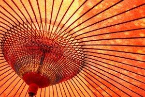 「江戸モアゼル」6話のあらすじと感想!ついに蔵地が仙夏へ想いをぶっけるのか?