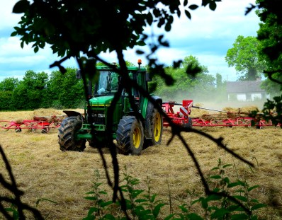 Making hay while the sun shines... even on a Sunday!