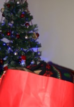 Christmas 2016 - Paper! Head in the bag!!