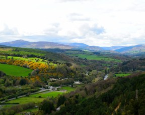 Vale of Avoca... the Earth showing her spring splendour!