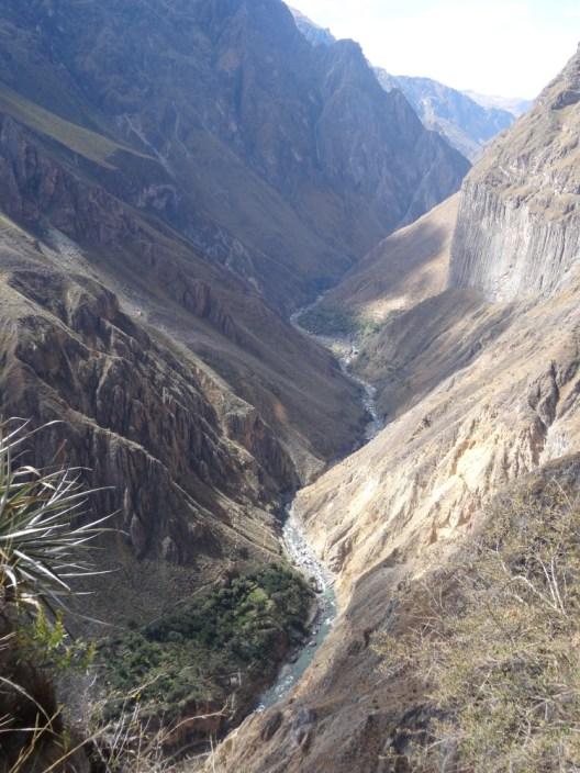 Canyon du Colca Pérou
