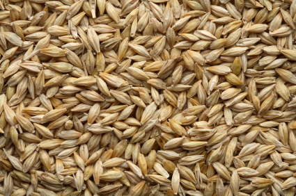 Batches of Barley