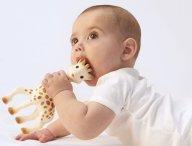 concours-votre-bebe-aux-cotes-de-sophie-la-girafe_1024x1024