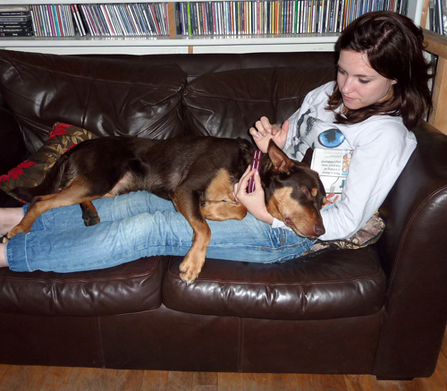 Brunette woman and Red Cloud kelpie dog lying on sofa