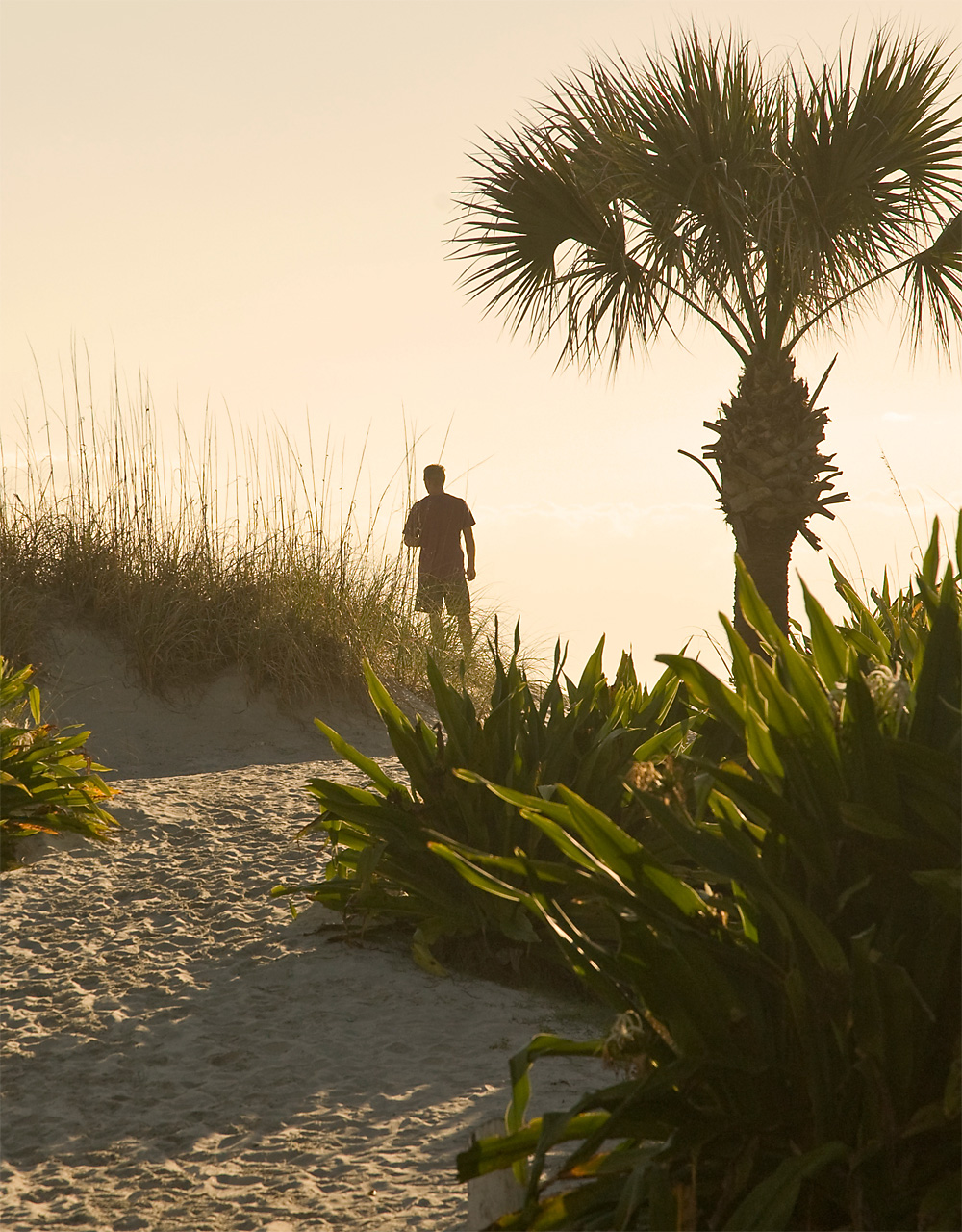 Man walking on st augustine beach