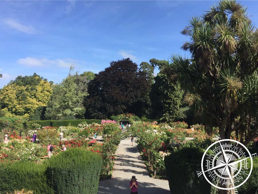 Blick auf den Rosengarten im Botanischen Garten