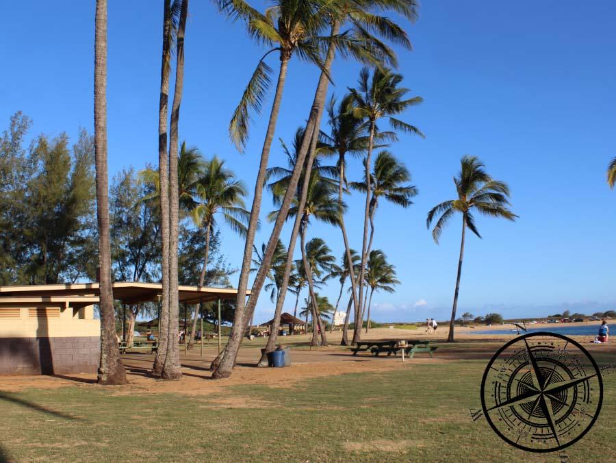 """Am """"Salt Pont Beach"""" gibt es viele Palmen und einen schönen Strand"""