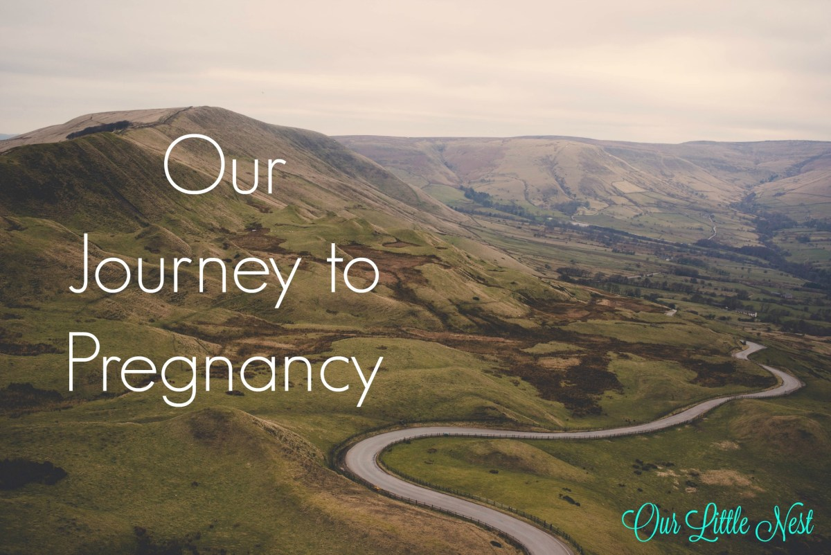Our Journey to Pregnancy