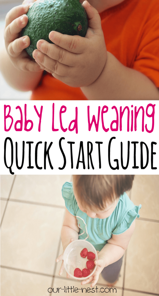 Baby Led Weaning: A Quick Start Guide