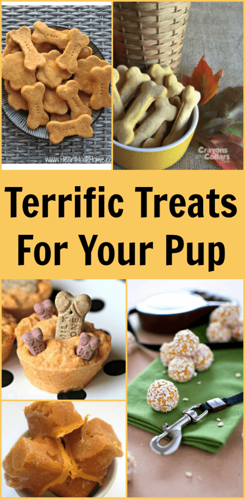 Terrific Treats For Your Pup