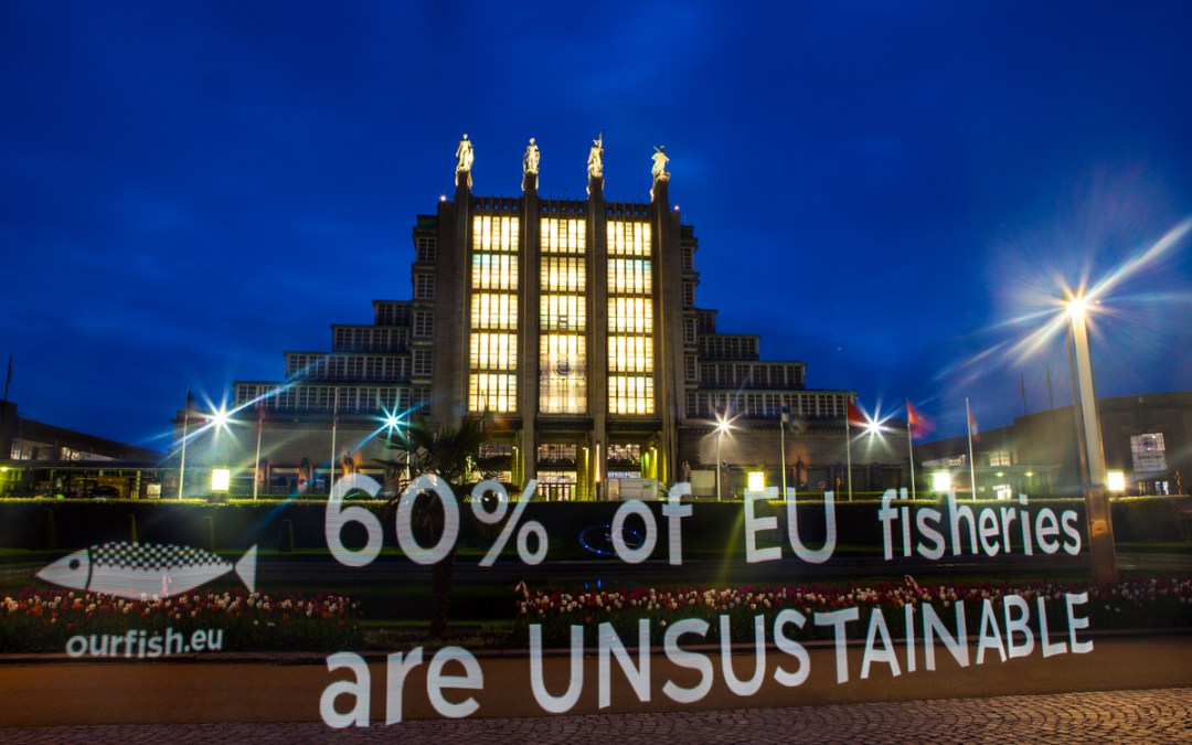 EU: Despite Reformed Common Fisheries Policy, We're Still Overfishing