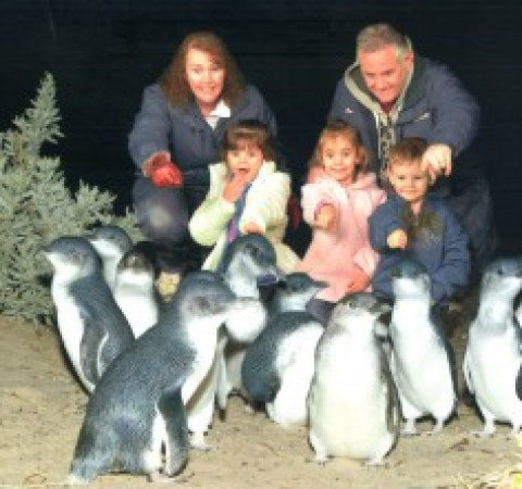 Our superimposed photo with the little penguins