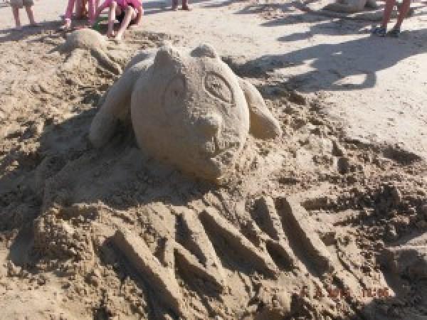 Sand sculpture at Cape Conran