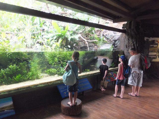 River Safari, Singapore
