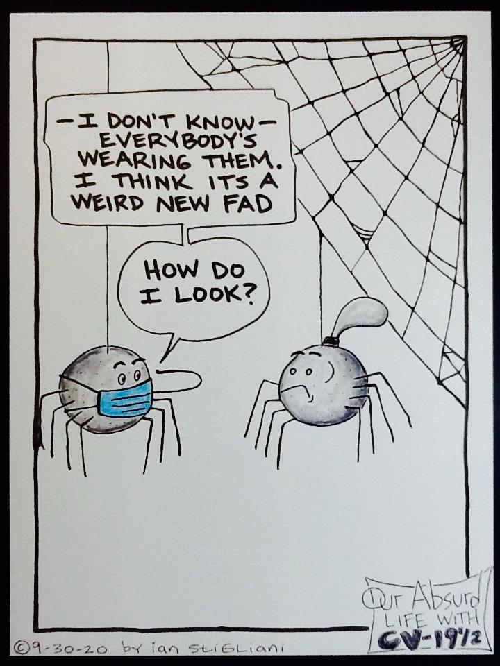 Stylin' Spider