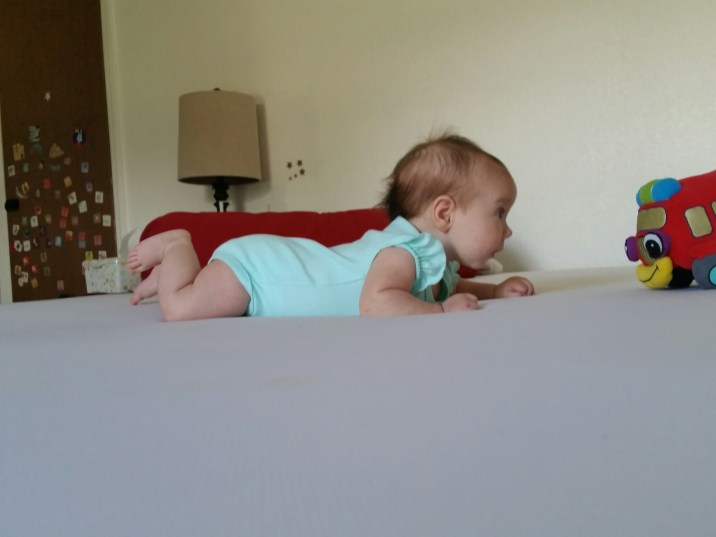 Learning to crawl