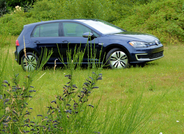 2016-volkswagen-egolf-side