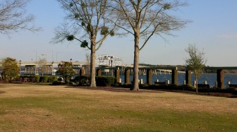 Beaufort River bridge to Lady's Island from the downtown battery park.