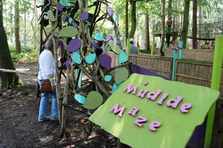 Heading into the Muddle Maze