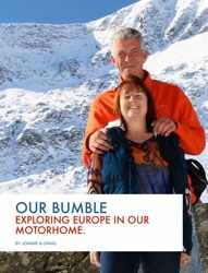 Example cover of Our Bumble
