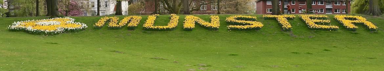 Munster Gardens