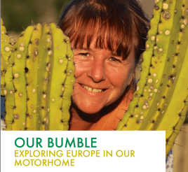 Our Bumble Magazines 2015