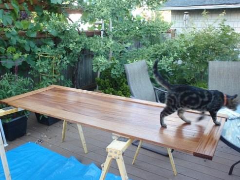 Tabby cat walks across freshly stained footboard