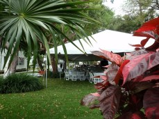 Large red coleus and wedding tent at Truman Little White House