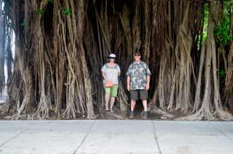 Tourists under enormous banyan tree
