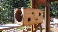 Wooe=den box with circular holes for cat play