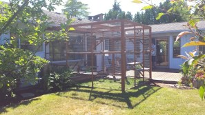 Large catio in backyard