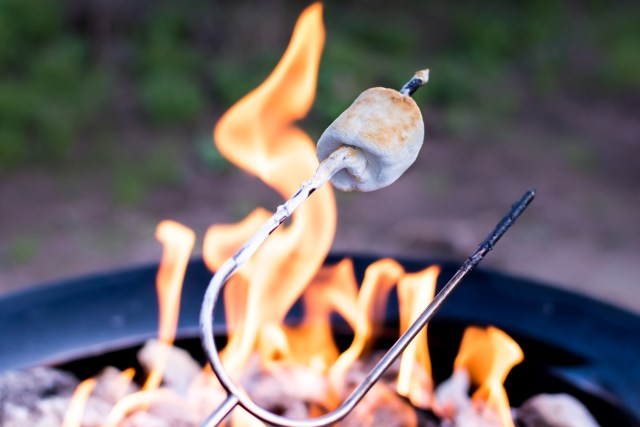 Marshmallow roasting over a fire