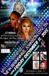 Show Ad   Miss Gay Tennessee USofA at Large   New Beginnings (Johnson City, Tennessee)   12/11/2015