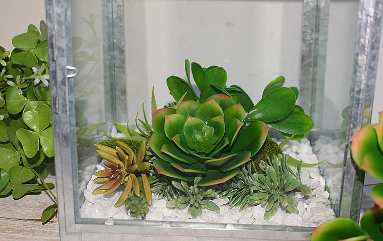 How To Make A Beautiful Succulent Terrarium Centsible Chateau #guestposts #succulentterrarium #succulentlantern #terrarium