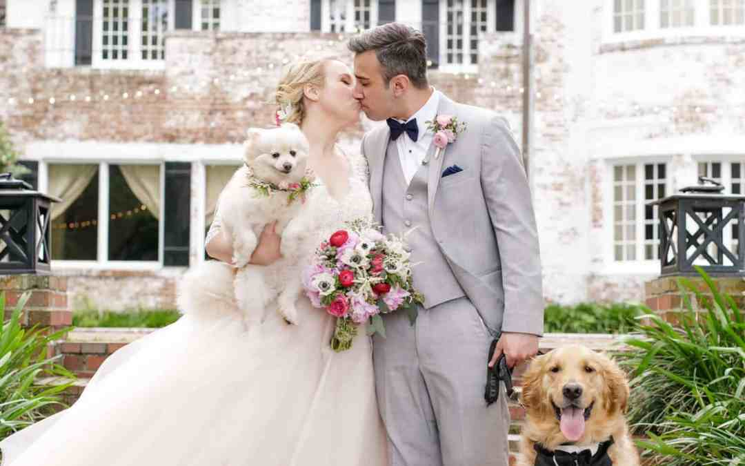 PeachTree House Orlando Wedding – 2 Dogs & Second Line Parade