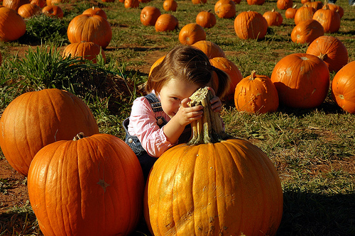 With the Pumpkins