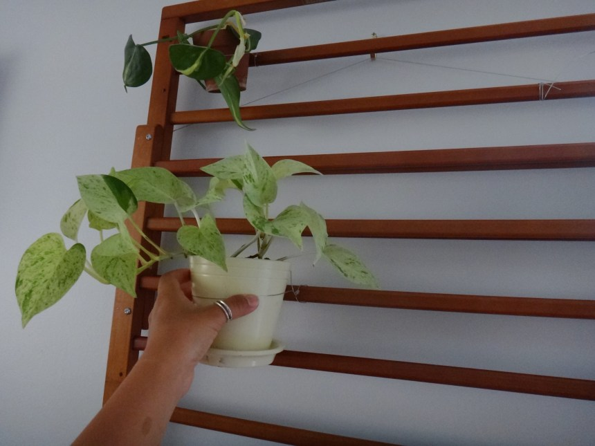 DIY Plant Hanger with Repurposed Baby Gates (12)